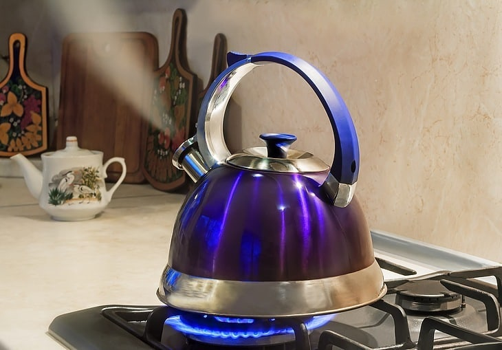tea kettle for gas stove - whistle