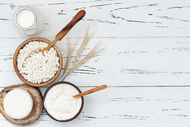 can-you-freeze-ricotta-cheese-introduction