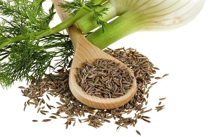 fennel-seed-substitute-cumin