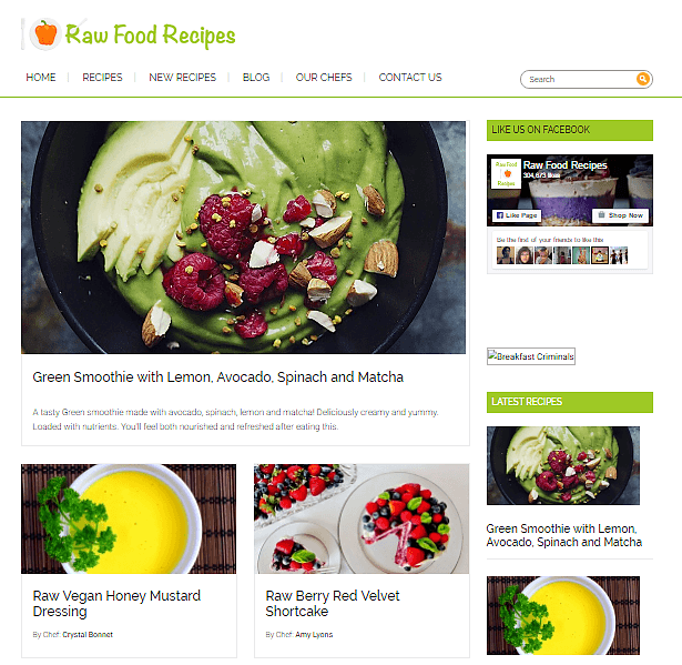 best-food-blogs-Raw-food-recipes