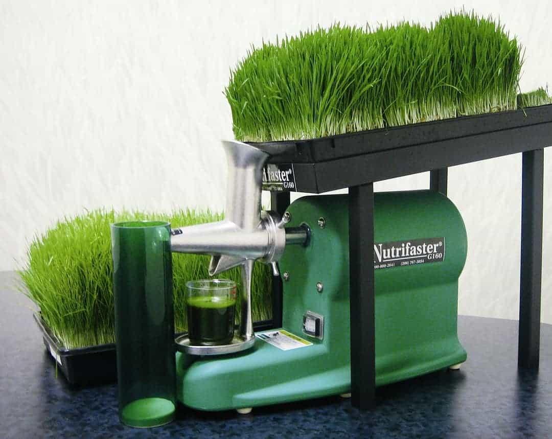 best-wheatgrass-juicer-size