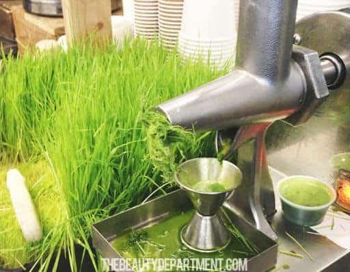 best-wheatgrass-juicer-speed