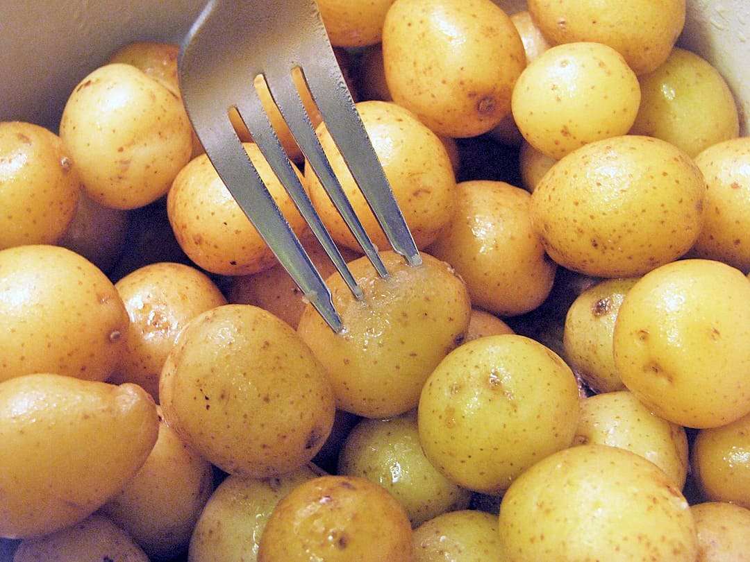 test-potatoes-with-fork