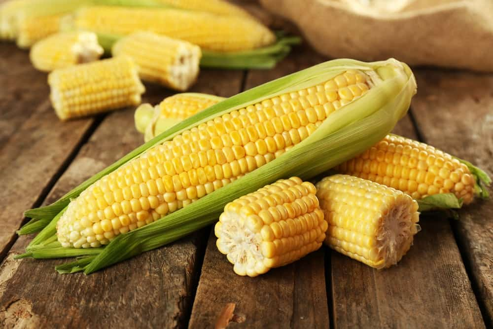 Recipe 2: Fresh Shoepeg Corn Dip