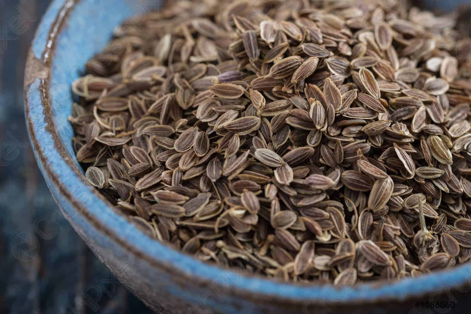 dill  seeds substitutes caraway seeds