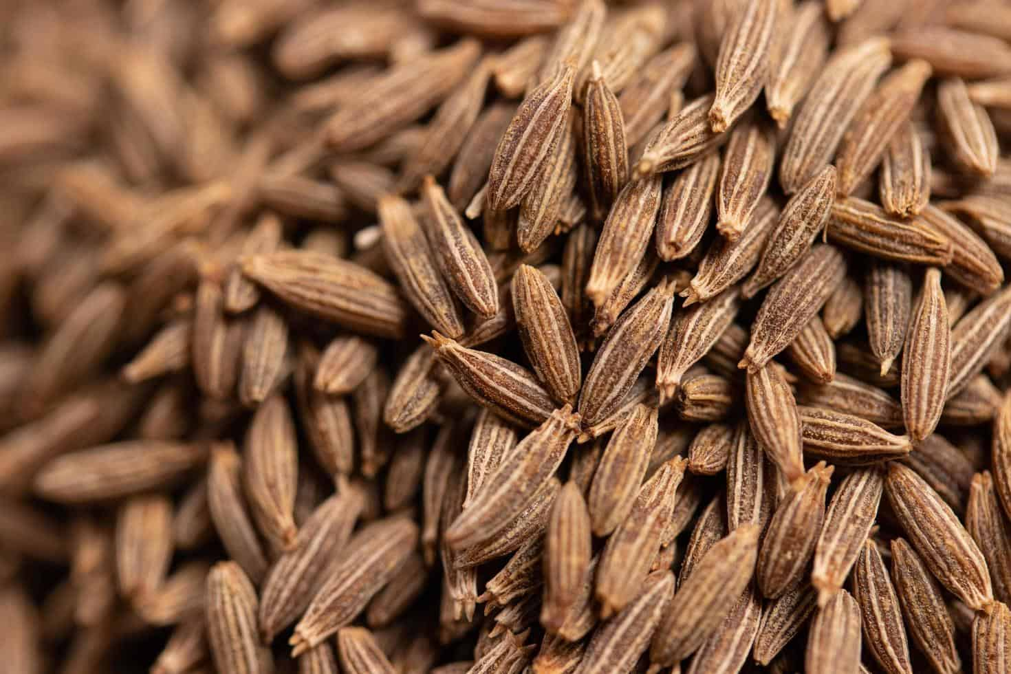 Cumin seed substitute for Caraway seed