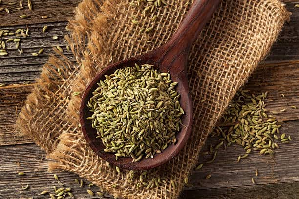 Substitutes for Caraway seeds, , Fennel